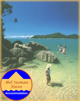 Abel Tasman National Park - just one of many magical places to spend the day